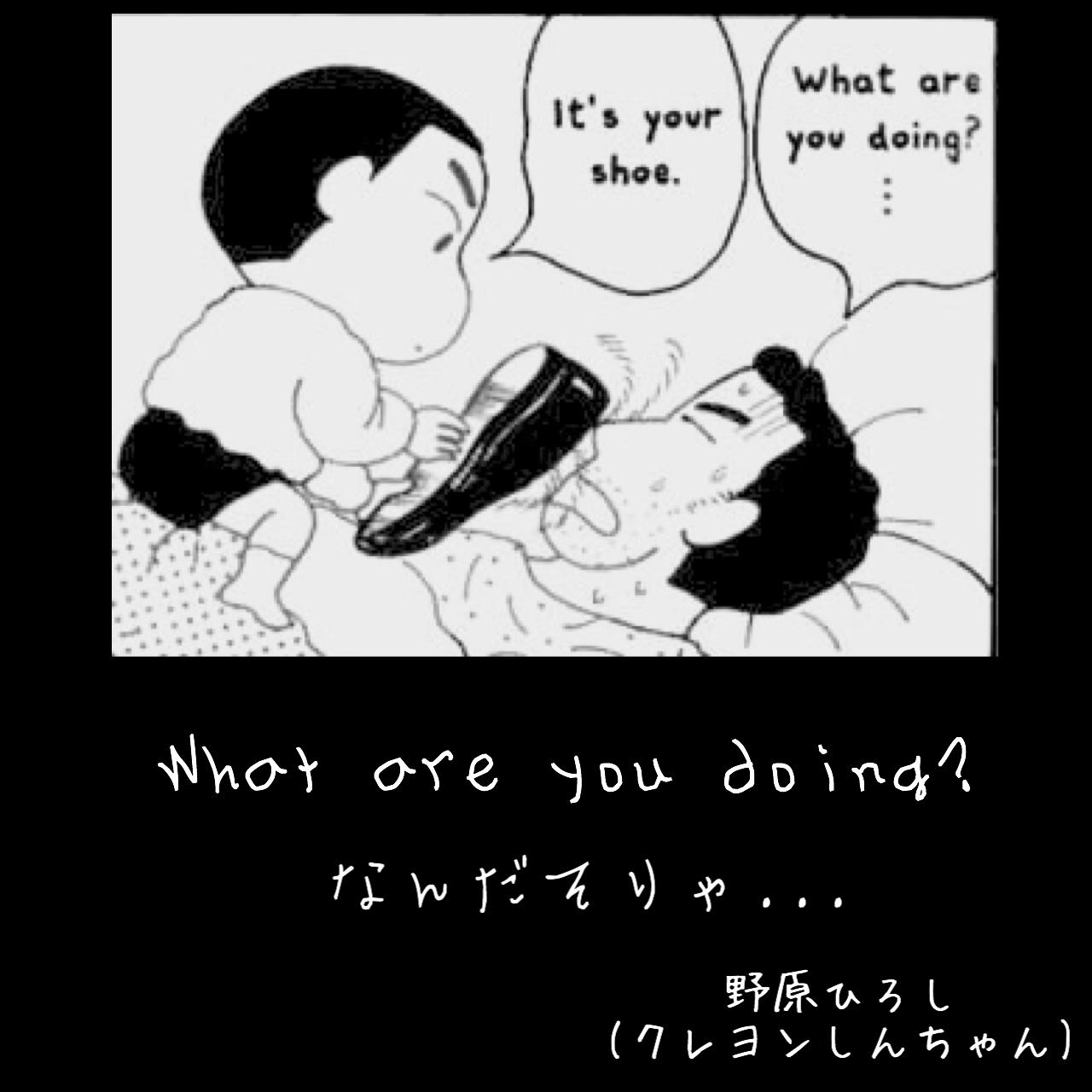 なんだそりゃ / 野原ひろし(クレヨンしんちゃん)